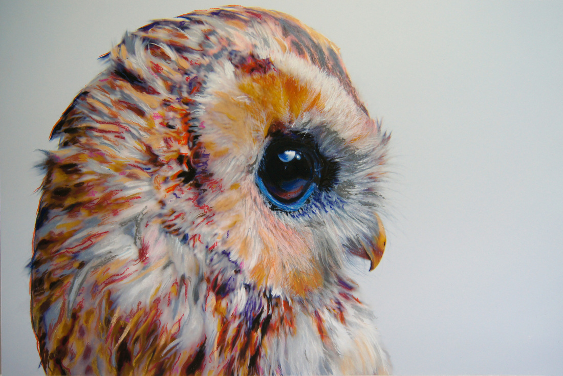 Realistic owl painting