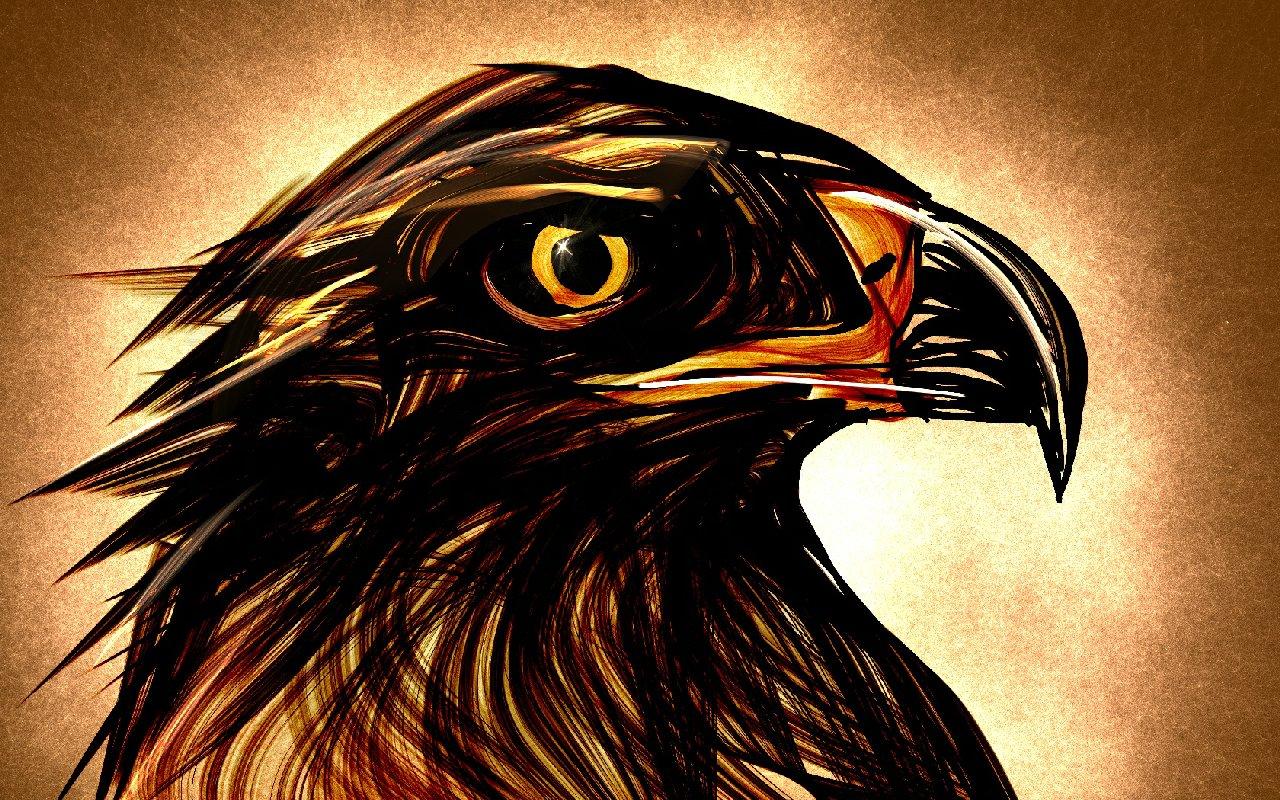 Eagle eyes