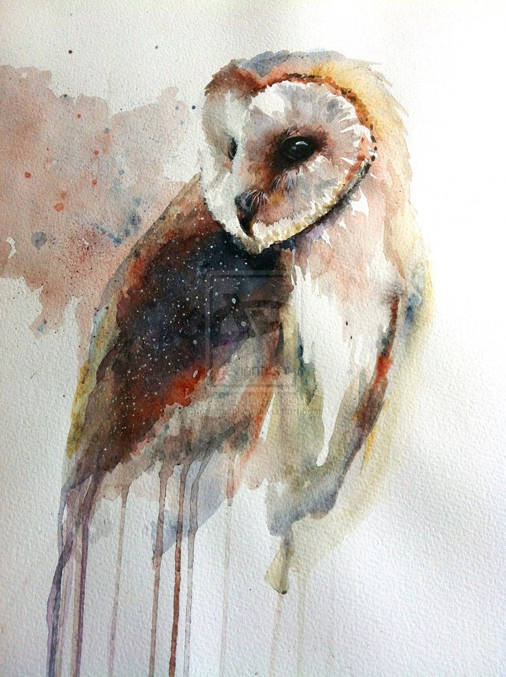 Colorful watercolor owl