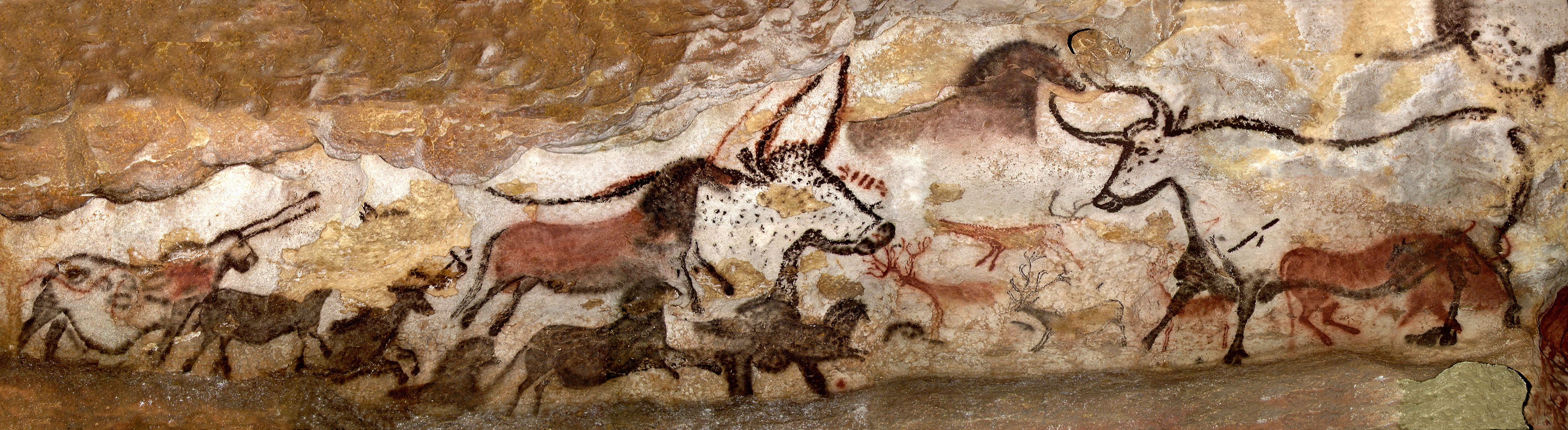 history and characteristics of the prehistoric art pieces found in the lascaux and chauvet caves In any history of art  at lascaux we have found pestles and mortars in which colours were mixed  the art galleries they created in caves were communal.