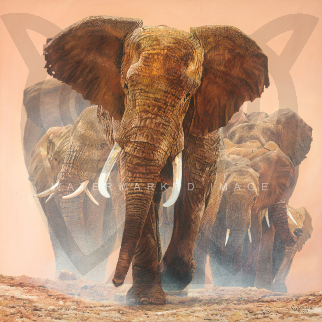 Thomas Blackshear Paintings