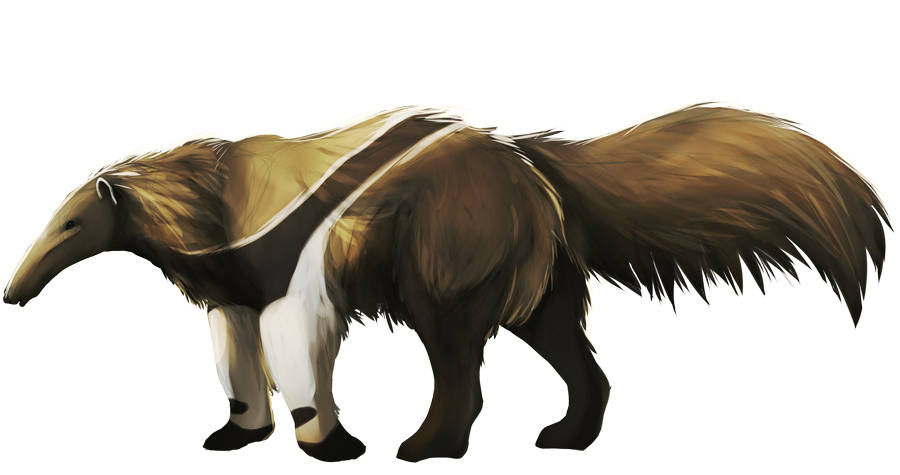 Anteater Paintings