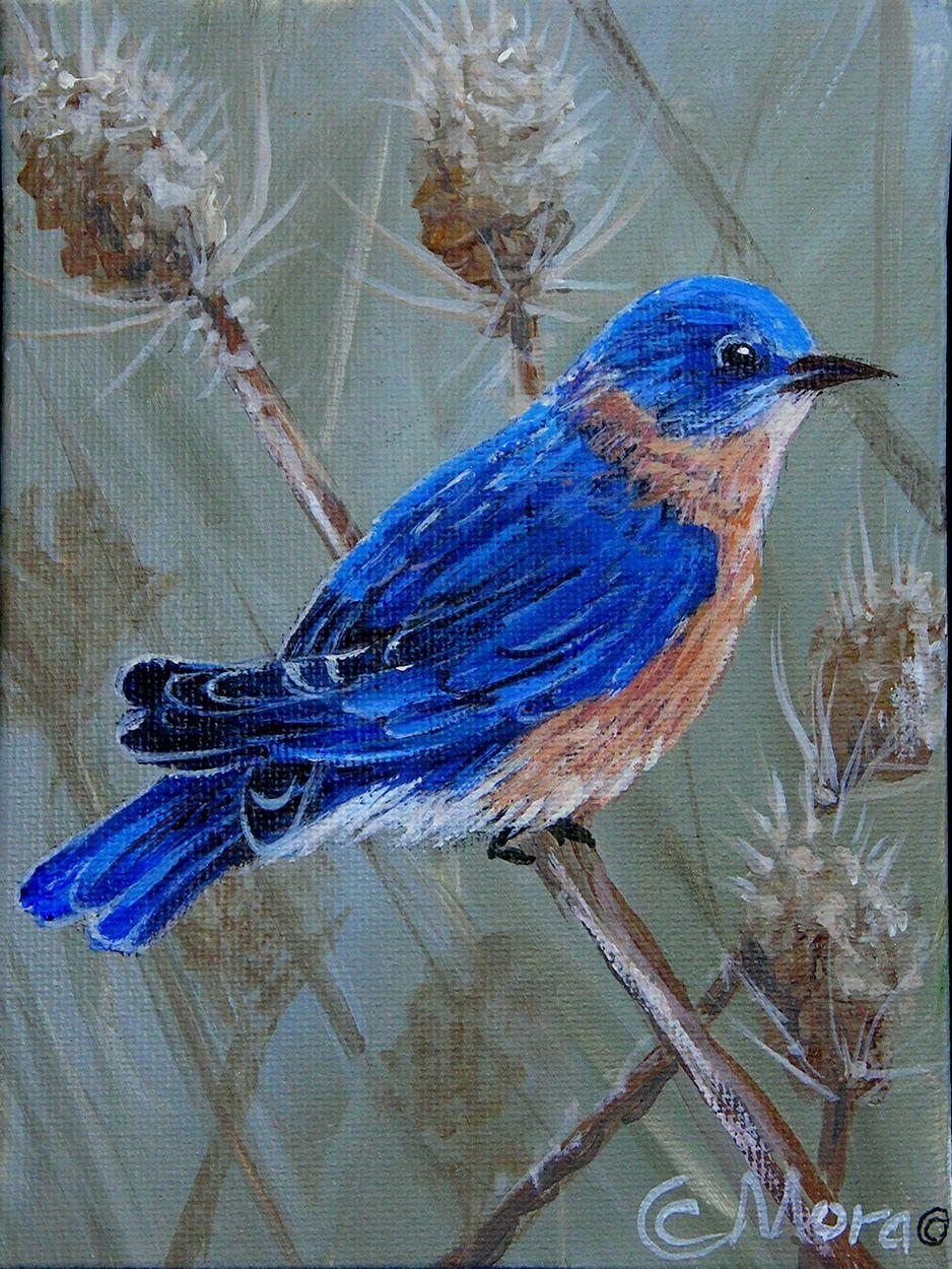 421 Original bird painting Acrylic bird painting bird  |Bird Painting Acrylic