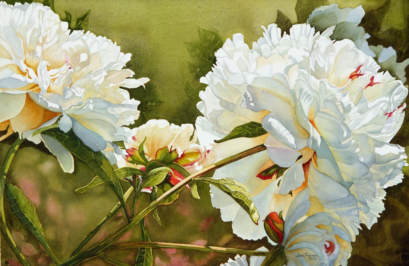 White Flower Paintings
