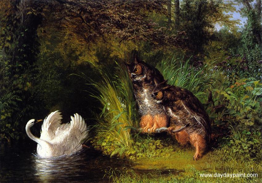 Wild Animal paintings