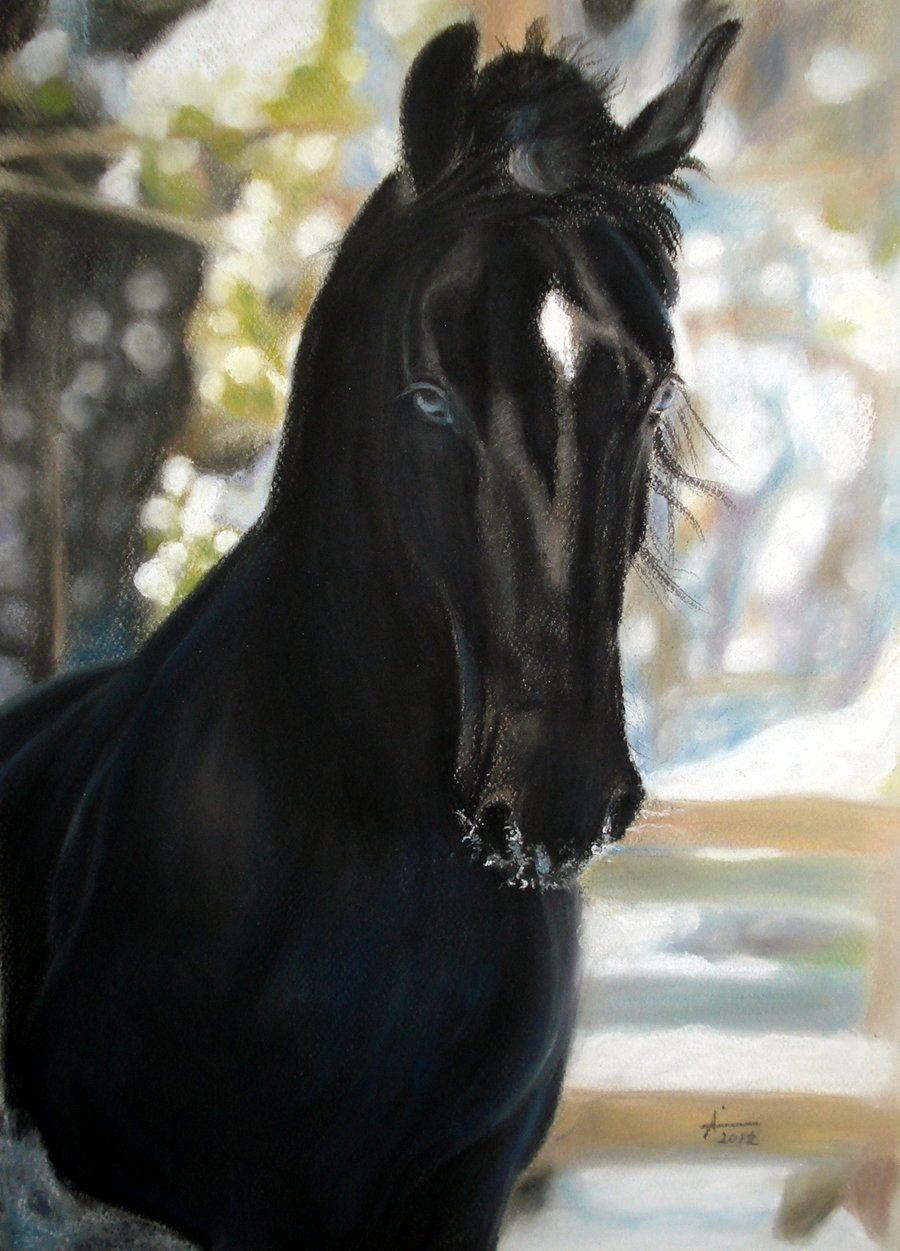 Black Horse Paintings