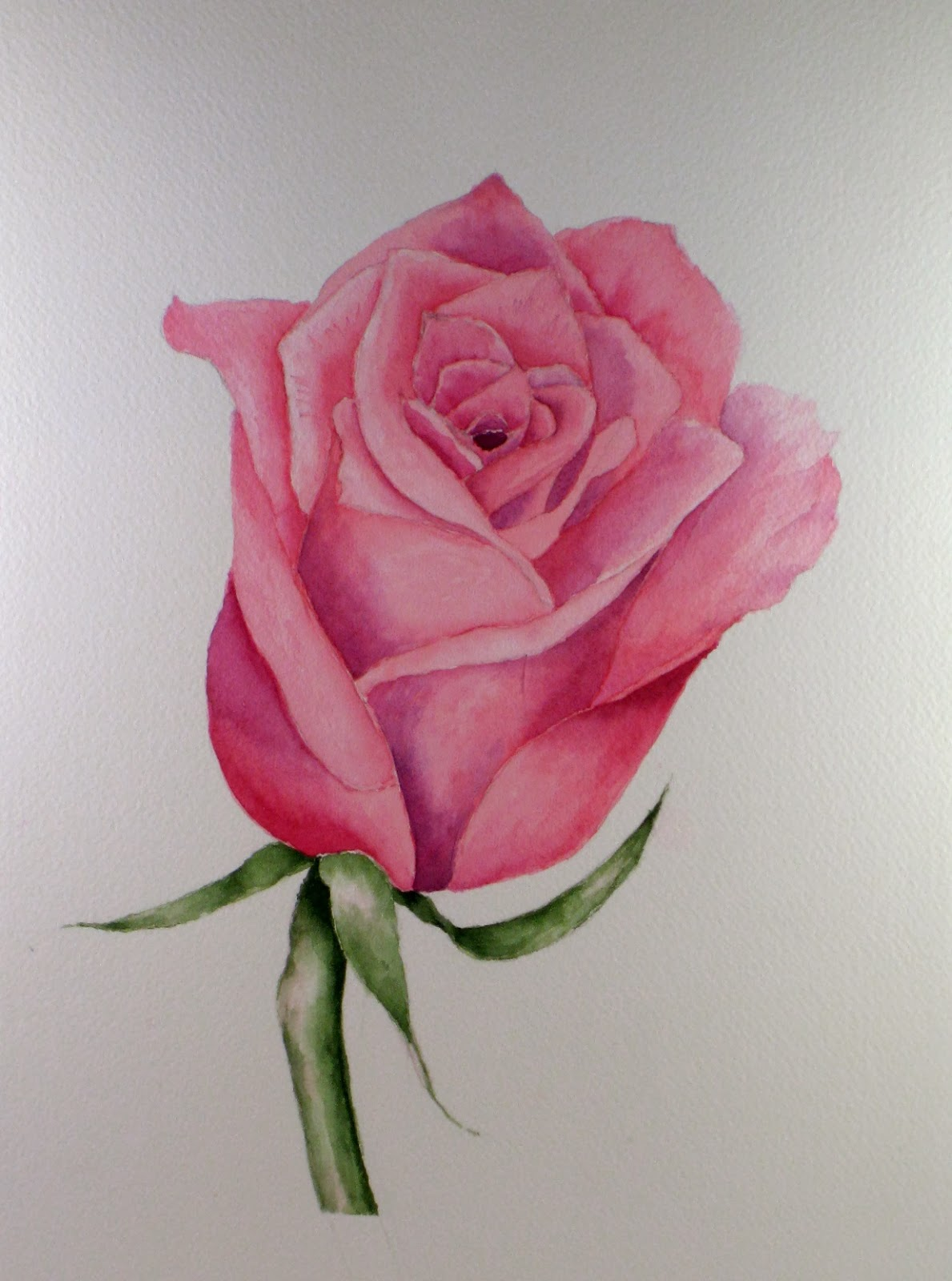 Easy Rose paintings