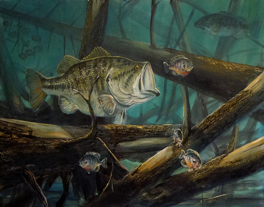 Largemouth Bass Paintings