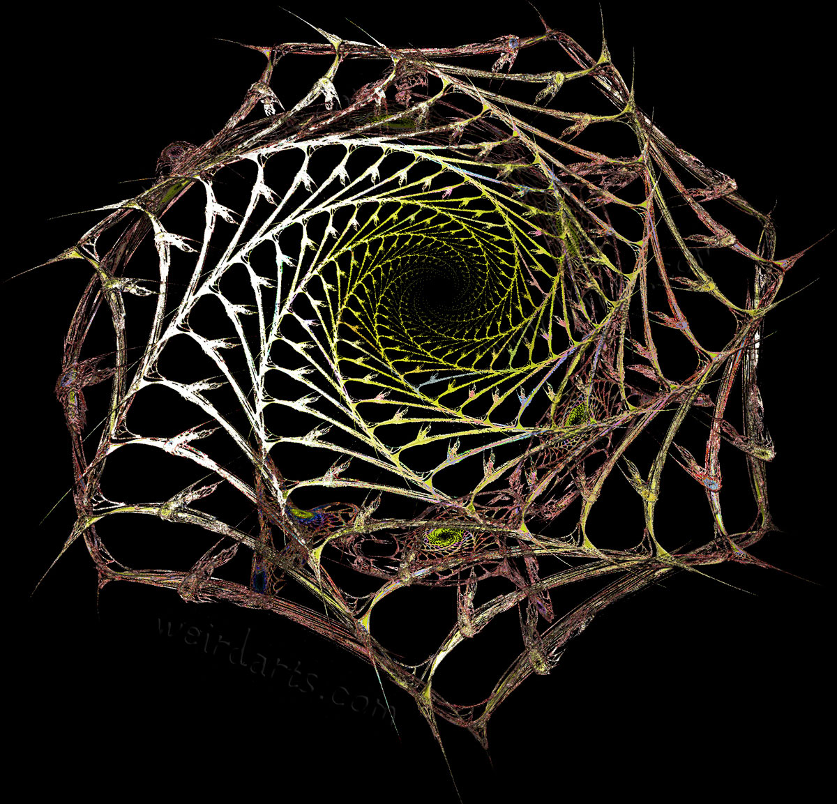 Painted Spider Webs Dont Look Any Less Scary   Randommization