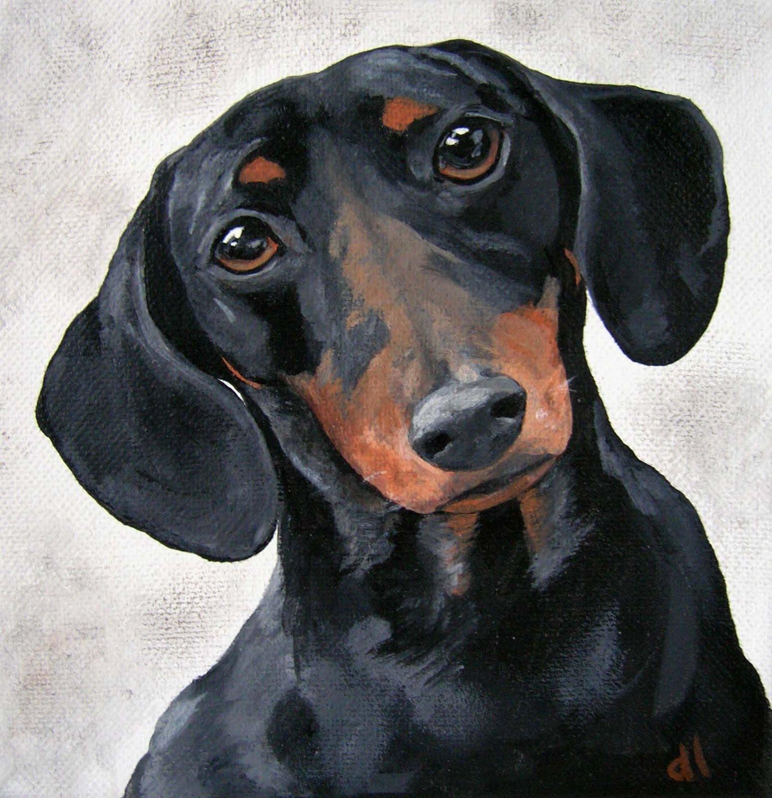 рисунки такса собака паркет