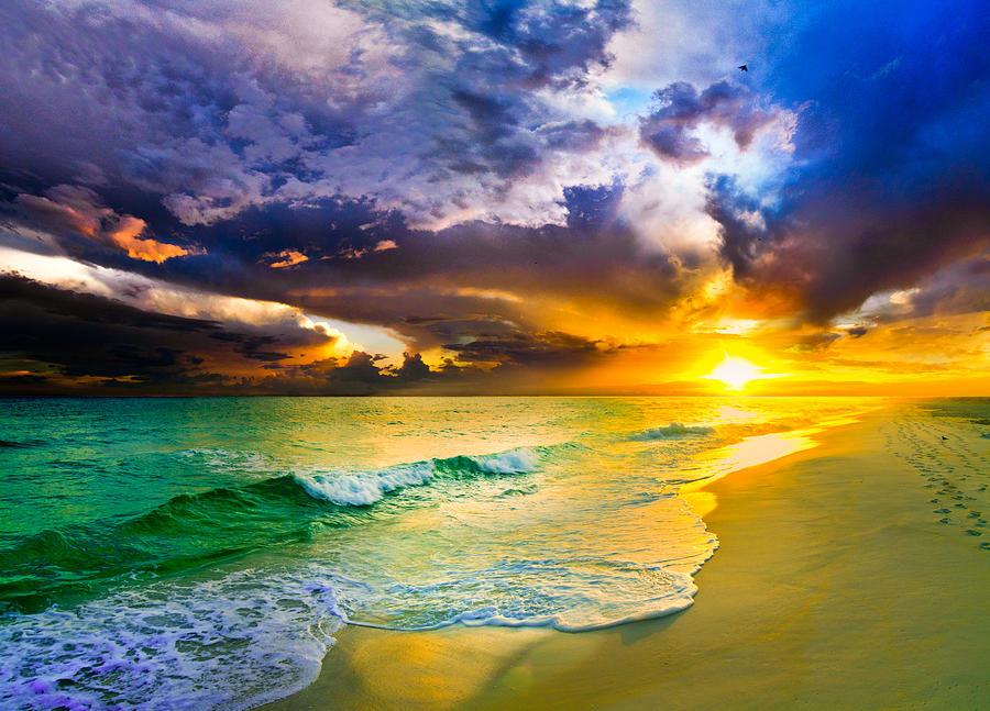 e94b075ef1a Florida Beach paintings