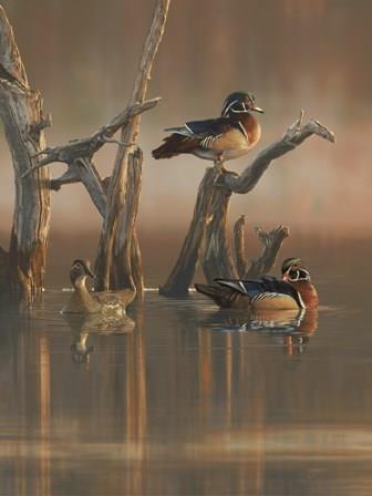 Ducks Unlimited Paintings