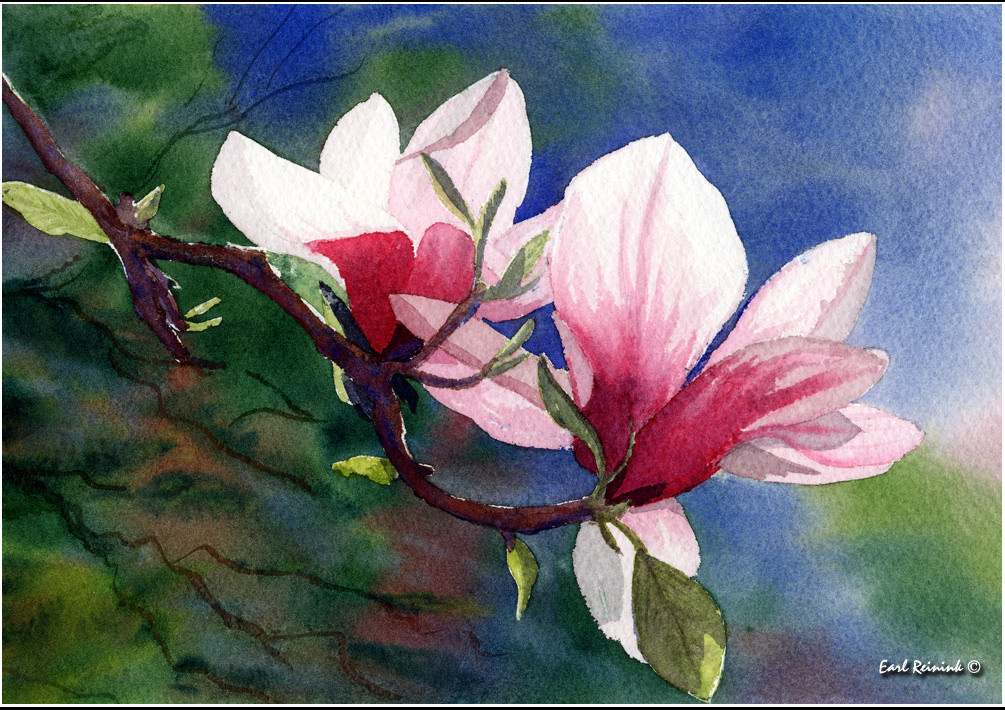 Magnolia Flower Paintings