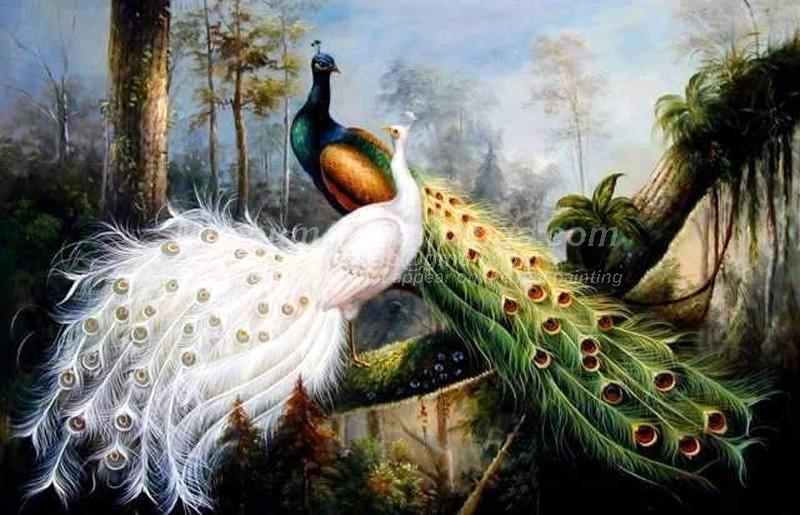 желтые красивые картинки с павлинами и попугаями вежливой улыбкой