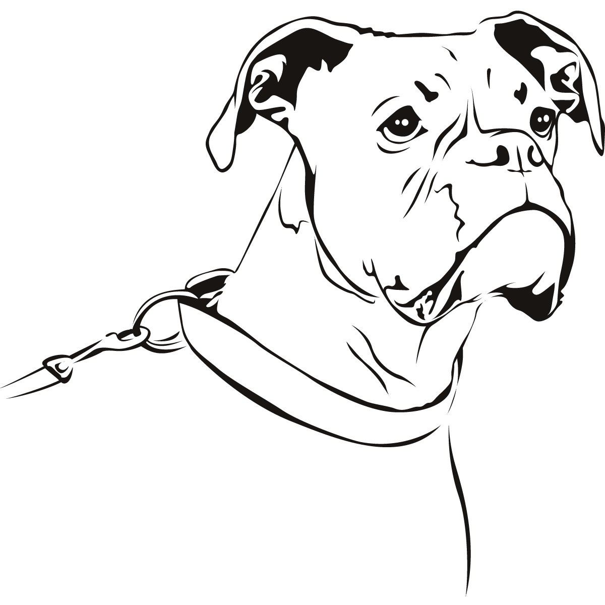 Drawing Of Boxer Dog Face