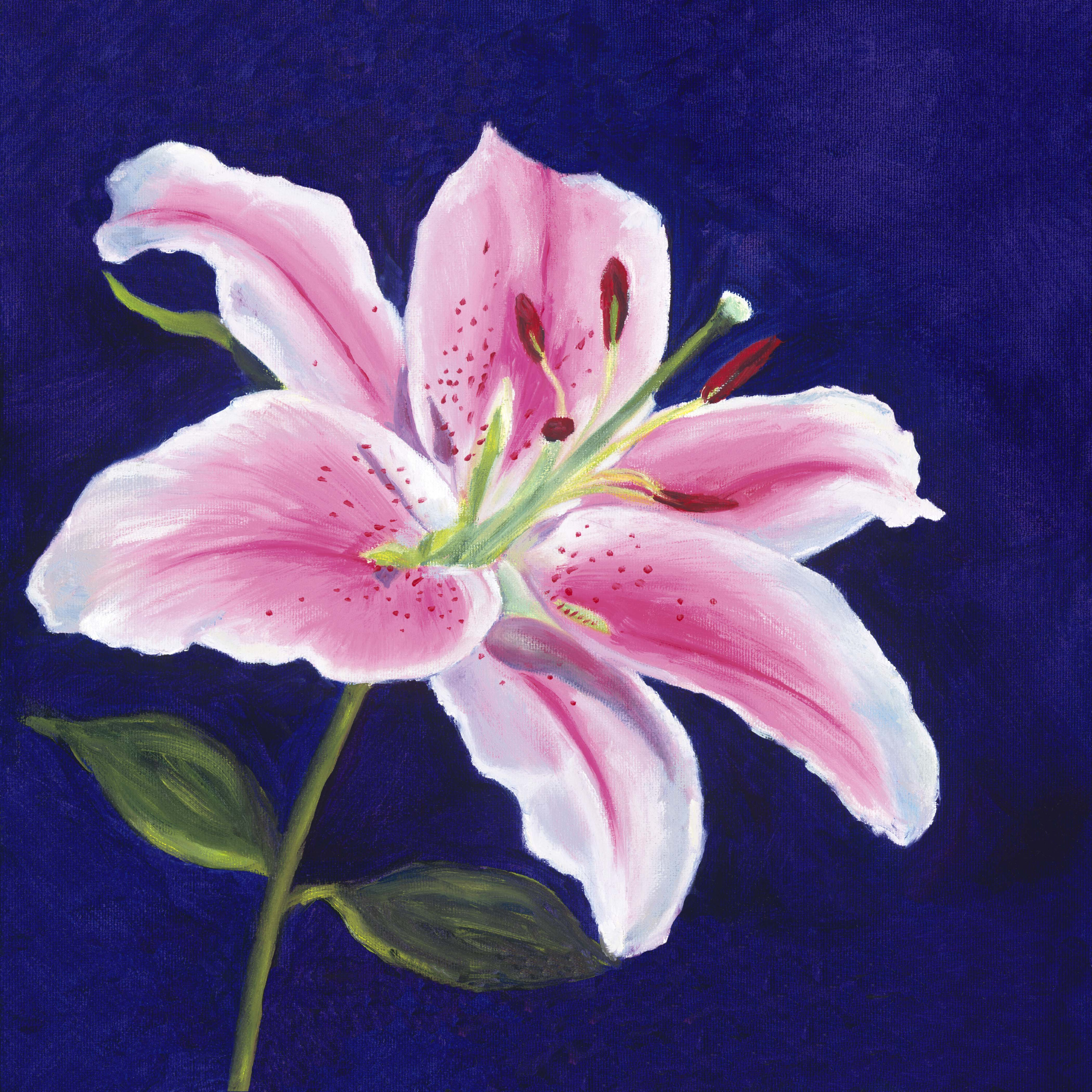 Lily paintings portrait of a stargazer lily of giving izmirmasajfo