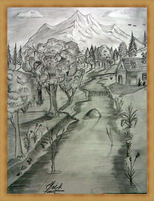 Nature Drawings paintings