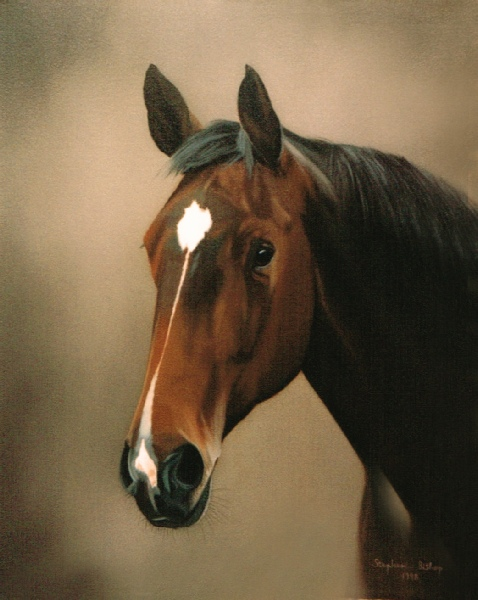 Horse Head Paintings