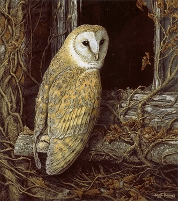 Famous Owl paintings