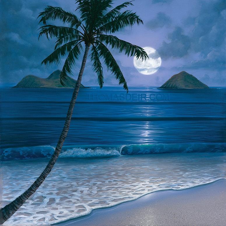 Night Beach paintings