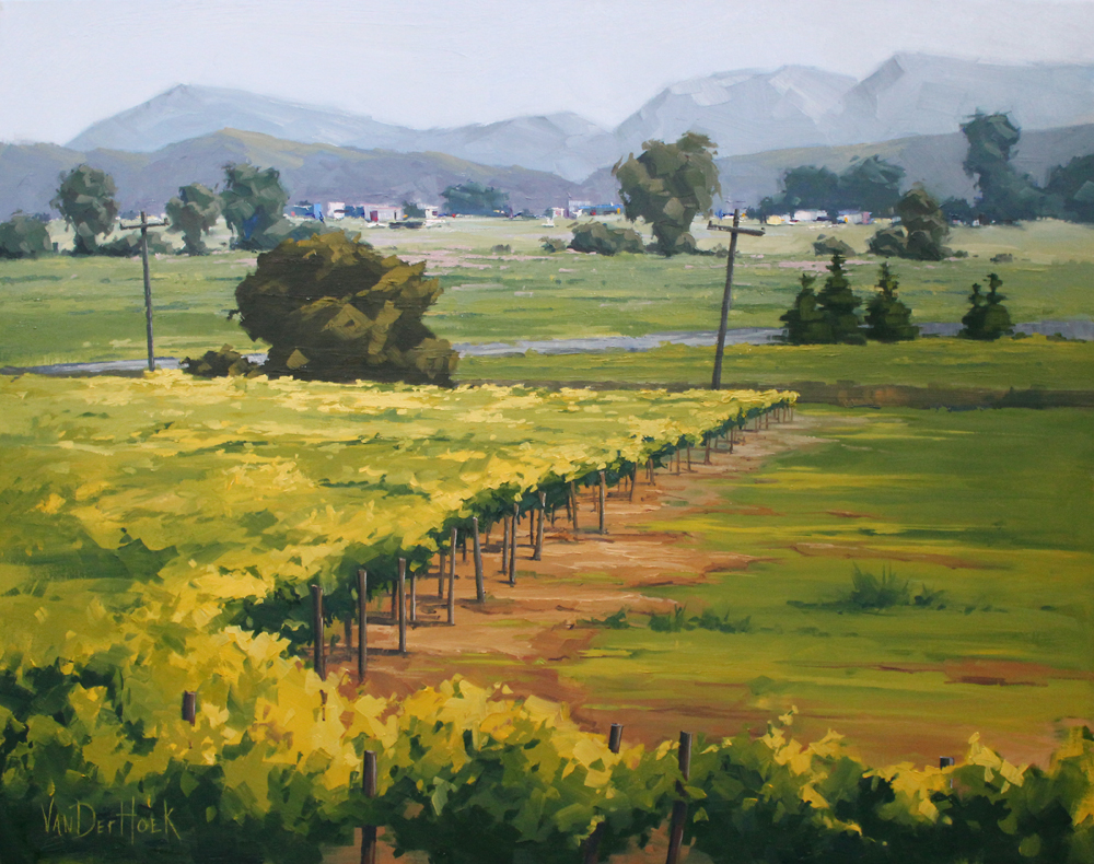 Vineyard Oil Paintings