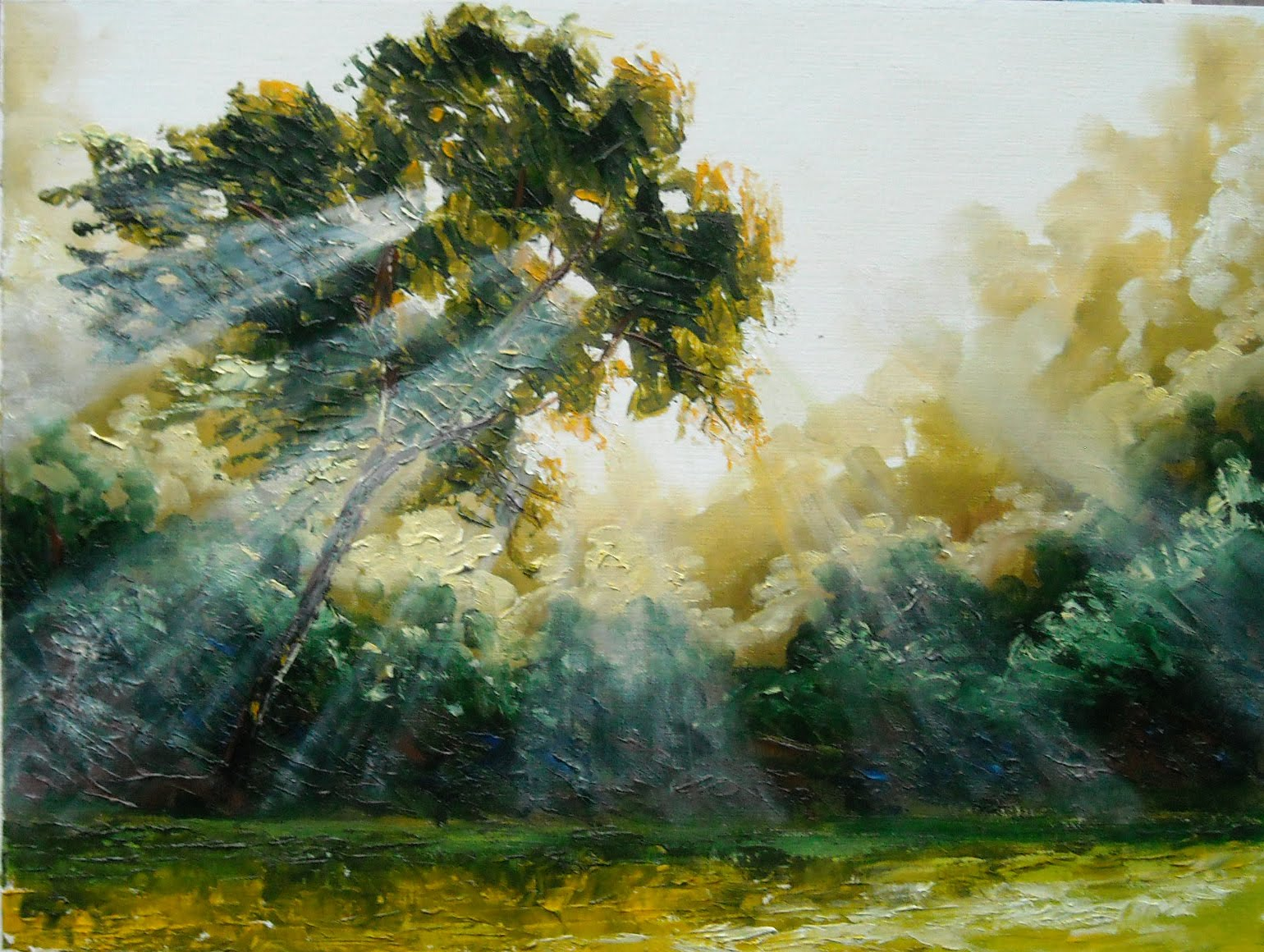 Lighting Oil Paintings