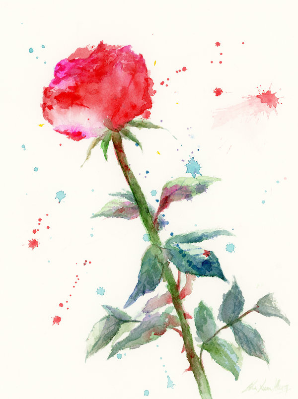 Roses Watercolour Paintings