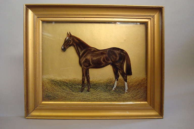 Horse Glass Paintings