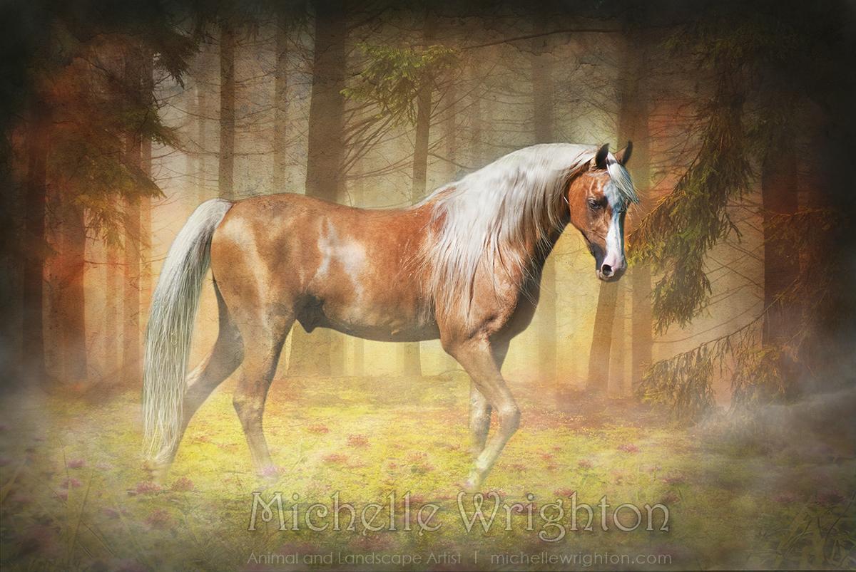 Palomino Horse Paintings