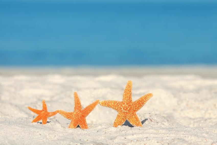 Preferred Beach Themed paintings SF03